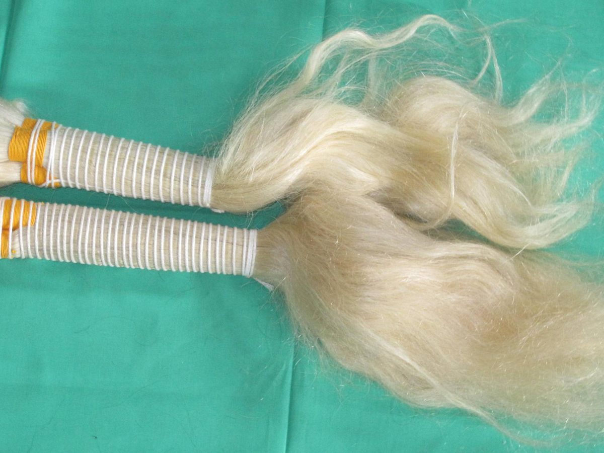 Indian Remy hair bleached bulk colour NO.613