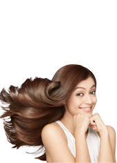 Wholesale Hair Factory,